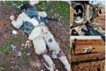 daesh-killed_albab1